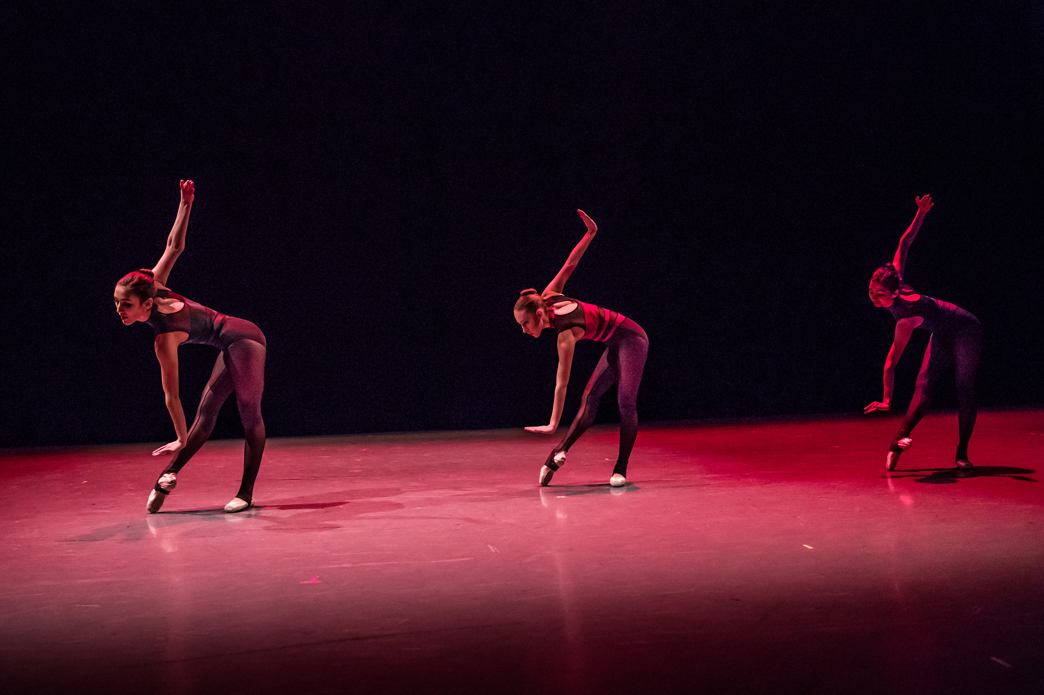 IN REVIEW: KCB dancers, plus others, create New Moves