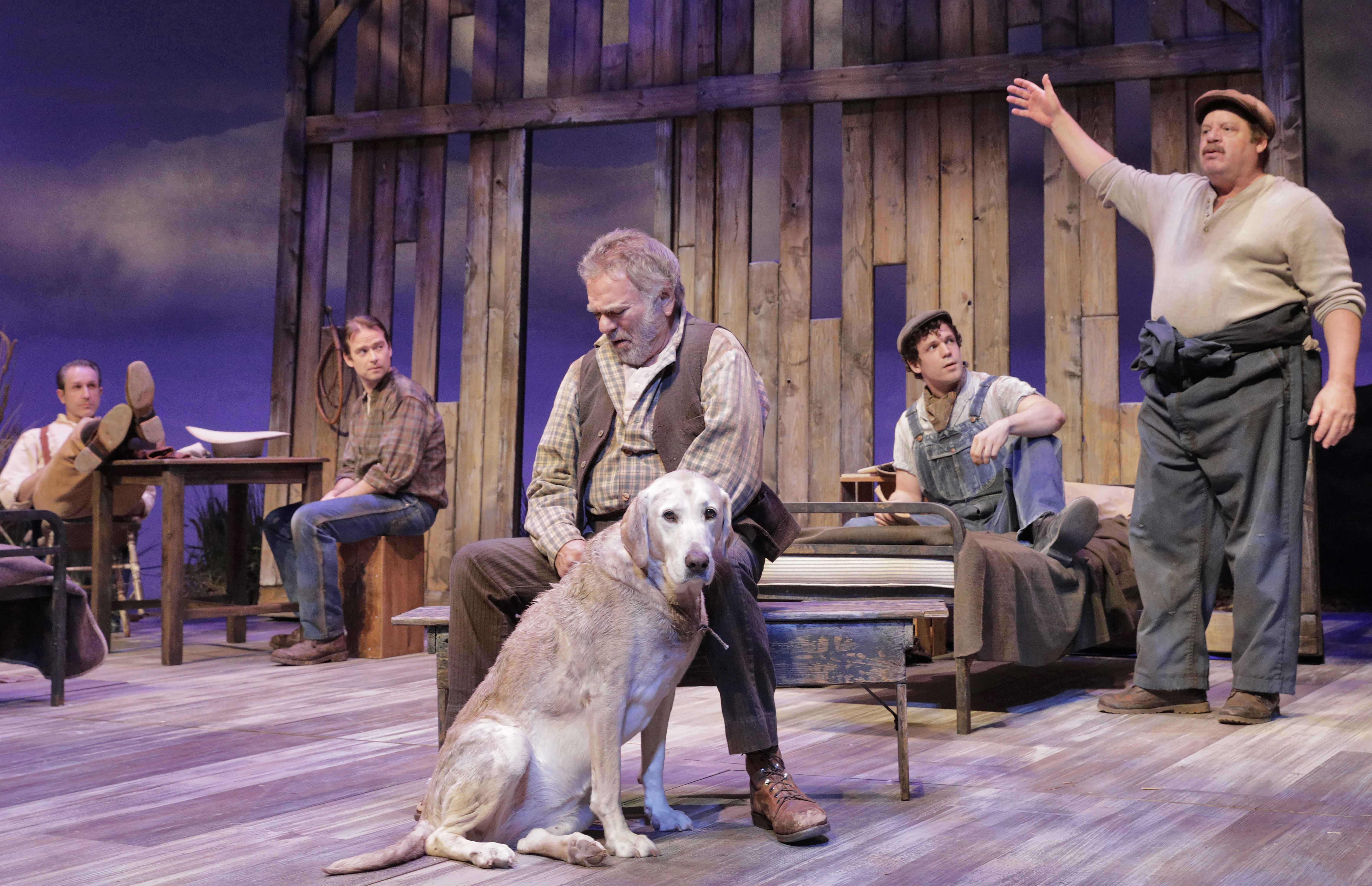 PAWS IN THE ACTION: Pets both real and invented make their way onto local stages
