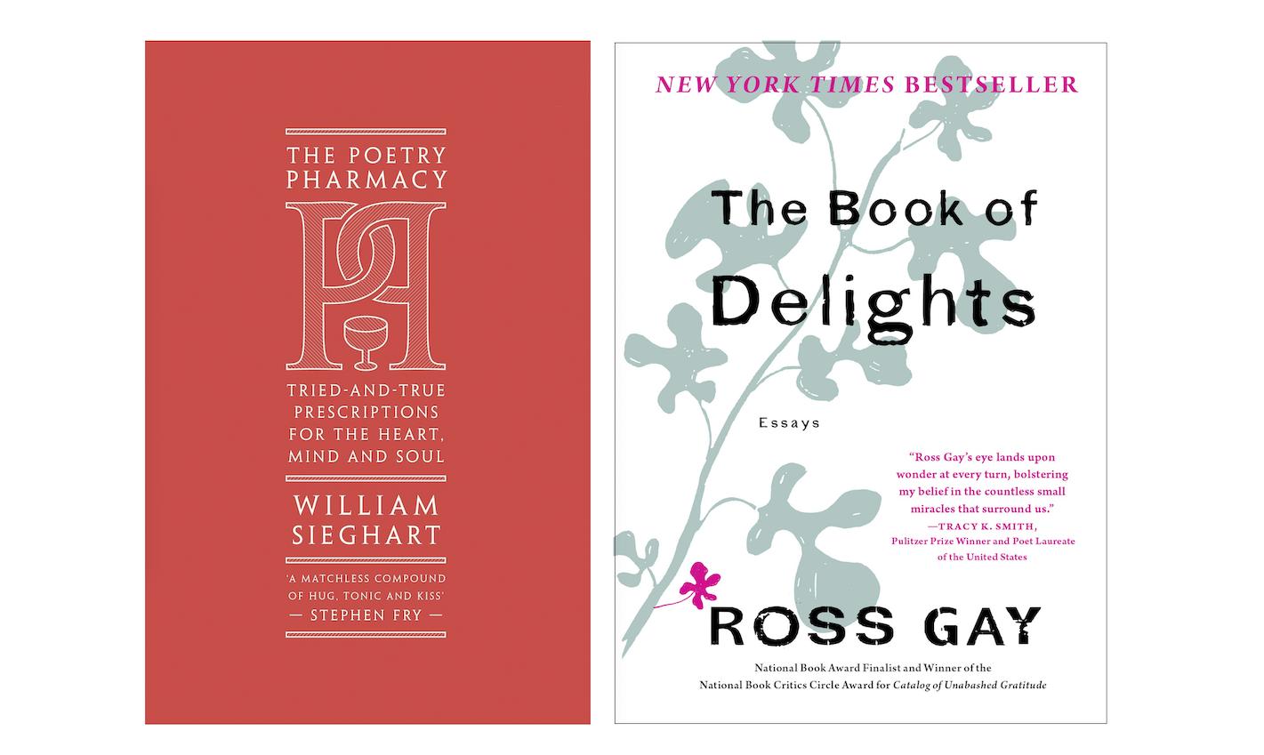 Rachel's Reads – June 2020