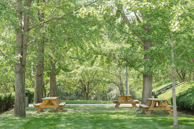 To Have And To Host – Picnic at the Park